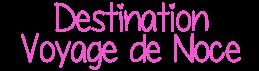 Logo destination voyage de noces
